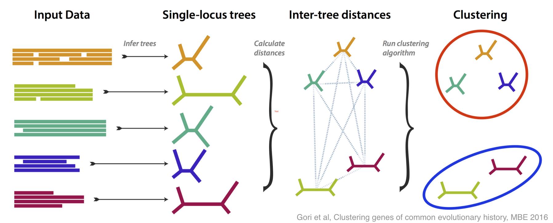 TreeCl conceptual diagram